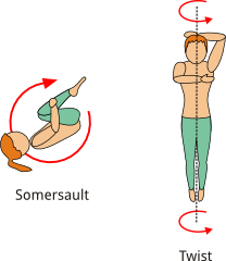 Somersaulting and Twisting
